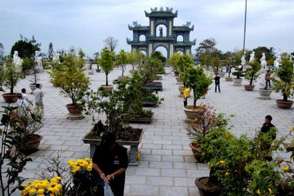 Tour Bà Nà - Sơn Trà 1 ngày